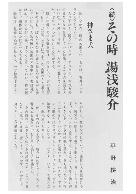 kamisamainu-1.jpg