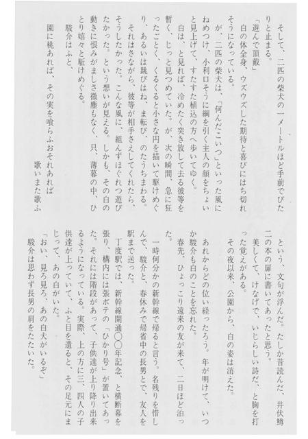 kamisamainu-3.jpg